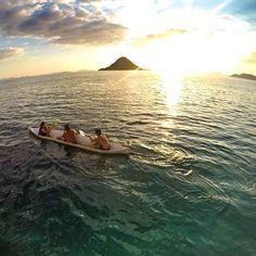"""""""Gua kangen nya asin nya air laut Gua kangen lompat dari atas kapal trus renang sama ikan ikan Gua kangen !  FIX ! I NEED VITAMIN SEA"""" I Need Vitamin Sea, Traveling, Waves, Explore, World, Instagram Posts, Outdoor, Flowers, Viajes"""