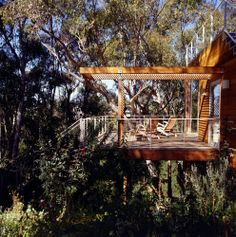 Treetop porch