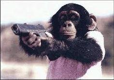 Resultado de imagen de monos graciosos