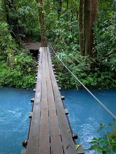 Footbridge at Parque Nacional Volcán Tenorio is a National Park in the northern part of Costa Rica