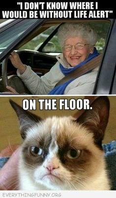 funny caption don't know where i'd be without life alert on the floor grumpy cat meme