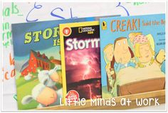 Books for teaching Storms and weather!