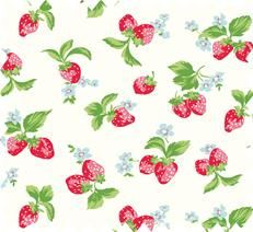 Need some strawberry fabric to make for my Garden Shabby chic shed!!! Inspiration my 80's Strawberry shortcake collection.