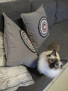 tuli :) Throw Pillows, Bed, Toss Pillows, Cushions, Stream Bed, Decorative Pillows, Beds, Decor Pillows, Scatter Cushions