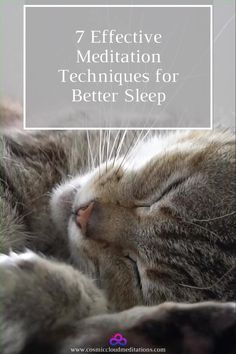 7 Effective Meditation Techniques for Better Sleep Womens Wellness, Meditation Techniques, Starry Eyed, Blog Love, Yoga, Kitty Cats, Live For Yourself, Self Help, Personal Development