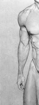 Pencil drawing male body art