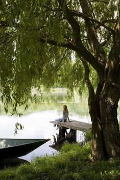 Pond, boat, and shady tree <3
