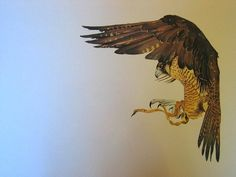 """ Hawk"", watercolor, S/M"