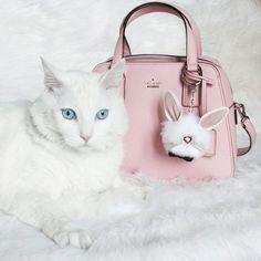 Kate Spade little babe bag