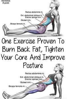 This One Exercise Proven To Burn Back Fat, Tighten Your Core And Improve Posture(Video Tutorial) – Toned Chick #weightlifting