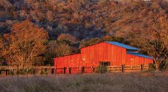 The Block Creek Natural Area—six miles north of FM 473 on Giles Ranch Road—and the red barn (pictured) are on private land, open to the public and wildlife photographers for an access fee.  Continuing two miles north of Giles Ranch Road, travelers find Old Tunnel State Park, home to nearly 3 million Mexican free-tailed bats from May to November. Farther north on the road, the Ferdinand Hohenberger Farm-stead and August Ebers House present picturesque examples of rock construction…