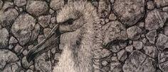 Image result for Richard Wastell pinterest