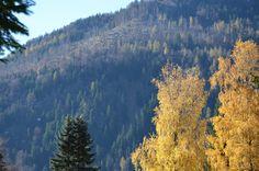 #Herbst in den Bergen in #Bayern