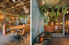 joseph-sports-bar-amstelveen-plantjes