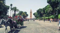 La mosquée Koutoubia  est un édifice religieux édifié au xiie siècle à Marrakech(Maroc) et représentatif de l'art des Almohades.Elle est un véritable chef-d'œuvre architecturale d'influences hispanomauresques.