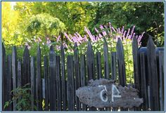 Uncommon Black Privacy Fence