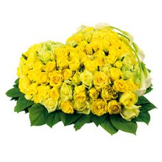 Order Nizam Mesmerizing Forever Love Arrangement from NizamFlorist online and save today from your local City of Nizams. Heart Shape Bouquet, NizamFlorist fresh and fast delivery in Andhra. Yellow Rose Flower, Yellow Roses, Red Flowers, Gift Subscription Boxes, Red And White Roses, Flower Delivery, Flower Designs, Valentine Day Gifts, Heart Shapes