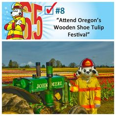 Sparky spent a day at Oregon's Wooden Shoe Tulip Farm, just in time for their annual Tulip Fest. Every year, a stunning expanse of colorful tulips