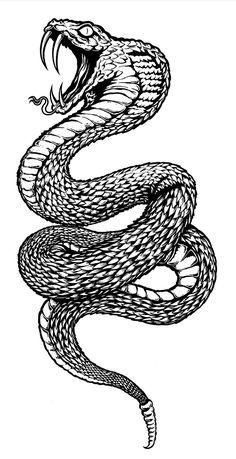 Behance-Pettitor Snake g Diy Tattoo, Sternum Tattoo, Snake Sketch, Snake Drawing, Snake Art, Drawing Pin, Octopus Tattoo Design, Tattoo Designs, Tattoo Sketches
