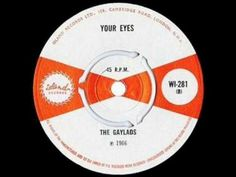 THE GAYLADS - YOUR EYES.wmv