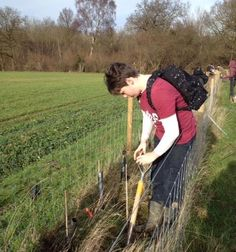 February 2016. Trees being planted at Bradfield Woods,  National Nature Reserve by Suffolk Wildlife Trust volunteers. Trees bought with Made by the Forge's tree planting donation. We make sure that what the company takes from the Suffolk environment, it puts back into the Suffolk environment.