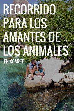Recorrido sugerido para los amantes de los animales en Xcaret, Riviera Maya.