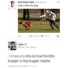 Liam's tweet today! 12.23.15 - (by: KRF1D) Click the picture to follow more 1D Updates!