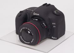 Canon Cake.  Awesome birthday cake inspired by Canon EOS 5D digital camera.