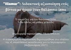 δραστηριότητες για το νηπιαγωγείοεκπαιδευτικό υλικό για το νηπιαγωγείο Animals, Animales, Animaux, Animal, Animais