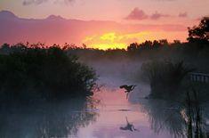 Everglades National Park, Florida    www.liberatingdivineconsciousness.com