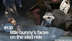 little bunny's faces on the sled ride