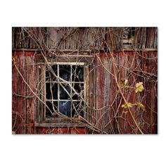 Lois Bryan 'Old Barn Window' Canvas Art