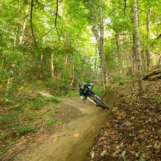 Vermont's #1 mountain bike trail, The Kingdom Trails (photo: Rob Whelan)