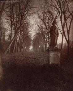 Eugène Atget - Parc de Sceaux, Versailles