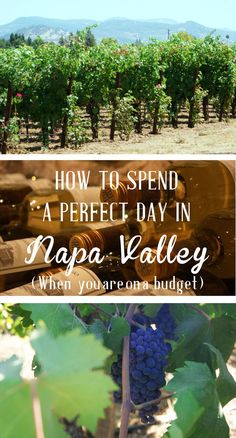 What to do in Napa Valley when you are on a budget? You want to enjoy the wine and the food from Napa, California, but you don't want to break the bank? Have a look and discover some free wine tasting sessions and great places to enjoy a day trip to the v Napa Wine Tasting, Margaret River Wineries, California Tours, Northern California, Napa Valley Wine, Napa Valley Style, San Fransisco, Wine Country, Cross Country