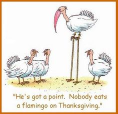 He's got a point. Nobody eats a flamingo on Thanksgiving.