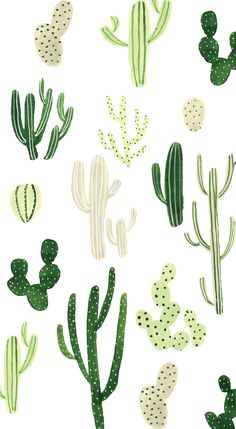 Cactus Wallpaper w/ different types of Cactus in different shades of green . This cute, fun, wallpaper is adorable and can really tie a whole look together! Animal Wallpaper, Colorful Wallpaper, Cool Wallpaper, Mobile Wallpaper, Pattern Wallpaper, Black Wallpaper, Flower Wallpaper, Trendy Wallpaper, Beautiful Wallpaper