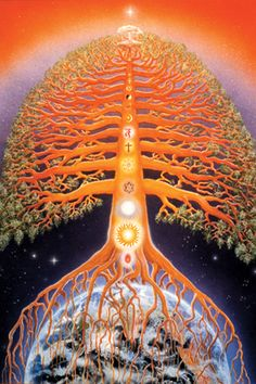 Brahma Kumaris - Tree in Time