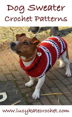 Best Free Crochet Dog Sweater Patterns by Lucy Kate Crochet Free Crochet Dog Sweater Patterns! Amazing crochet dog sweaters from easy dog sweaters to fabulously unique ideas. Crochet Dog Sweater Free Pattern, Dog Coat Pattern, Sweater Patterns, Crochet Patterns, Crochet Ideas, Pet Sweaters, Small Dog Sweaters, Crochet Sweaters, Crochet Gratis