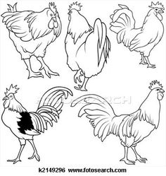 Stock Illustration of Rooster Set - Search Clip Art, Drawings, Fine Art Prints, Illustrations, and Vector EPS Graphics Images - Rooster Painting, Rooster Art, Chicken Painting, Chicken Art, Chicken Drawing, Animal Drawings, Pencil Drawings, Art Drawings, Chickens And Roosters