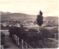 Photograph from the collection of James Backhouse Walker of a view of Hobart from a garden behind Salamanca Place.