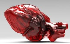 How's This 3D Printed Human Heart?  :)  From http://3dprintboard.com