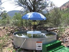 Abiquiu Holiday Cabin: Anasazi Ruin Family Vacation Retreat