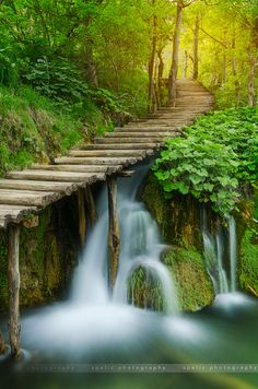 ~~water path |  forest waterfall, Plitvice Lakes - Croatia | by Matija Spelic ヅ~~