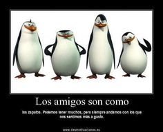 Translation: Friends are like. we can have many but we are always with the ones we feel most comfortable! Spanish Teaching Resources, Language Quotes, Friends Are Like, Disney Quotes, More Than Words, Spanish Quotes, Friends Forever, Friendship Quotes, Make Me Smile