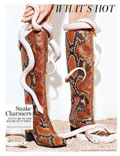 Snake Charmers (W Magazine)