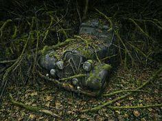 Verlaten auto's in bossen. Mooi.