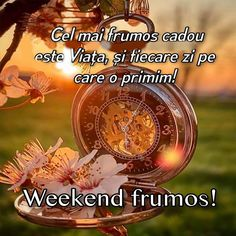 Goog Morning, Good Morning Coffee, Weekend Vibes, Happy Weekend, Good Morning Greetings, Cool Pictures, Prayers, Inspirational Quotes, Cards