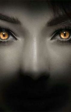 #wattpad #romance What happens when the Celtic witch of evil- Carman- wants to ruin you and your partner's lives? And your dead best friend is in on her plans? Find out in Supernatural Takeover, A Romantic horror about a woman, her boyfriend and her best friend when their lives get taken over by everything Supernatu...