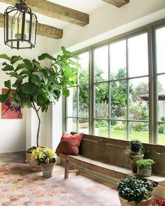Vijgenboom inspiratie - Woontrendz